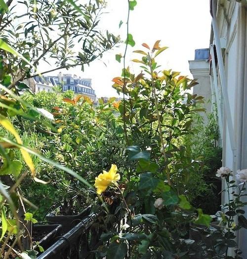 Vente de prestige appartement Paris 8ème 2780000€ - Photo 2