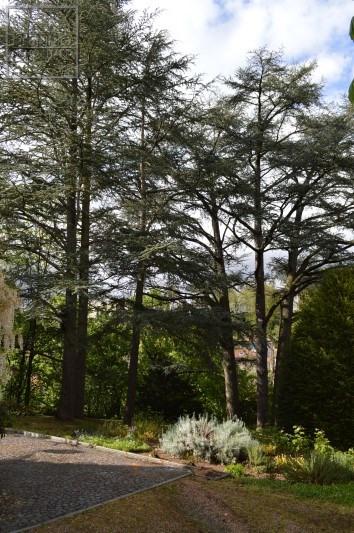 Deluxe sale house / villa Arbresle (l') 750000€ - Picture 11