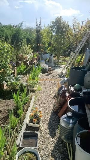 Life annuity house / villa Aussonne 55000€ - Picture 1