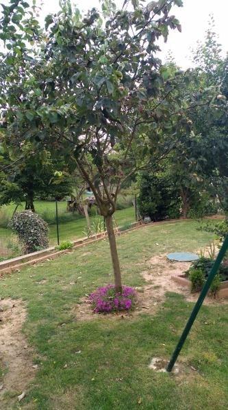 Vente maison / villa Aigne 178500€ - Photo 5