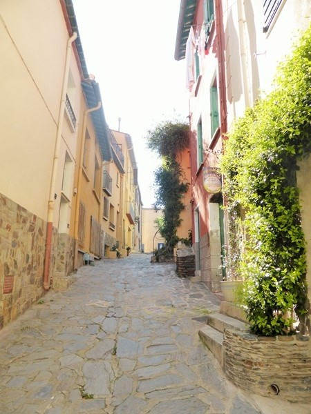 Vacation rental apartment Collioure 262€ - Picture 8