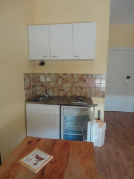 Location appartement Aire sur l adour 271€ CC - Photo 1