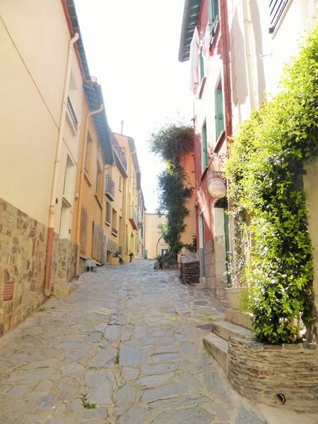 Location vacances appartement Collioure 262€ - Photo 8