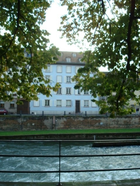 Location appartement Strasbourg 650€ CC - Photo 2