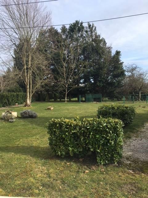 Sale house / villa Louhans 280000€ - Picture 15