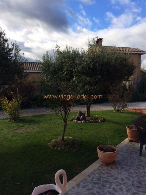 Vendita nell' vitalizio di vita casa Palau-del-vidre 171000€ - Fotografia 4