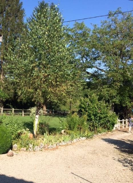 Vente maison / villa Cuisery 10 mns 119000€ - Photo 4