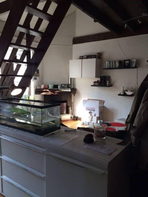 Location appartement La ville-du-bois 591€ CC - Photo 3