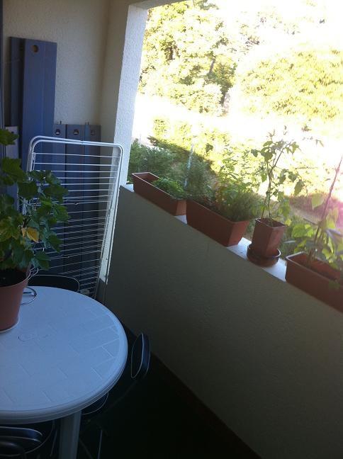 Vente appartement Dolus d'oleron 67000€ - Photo 2