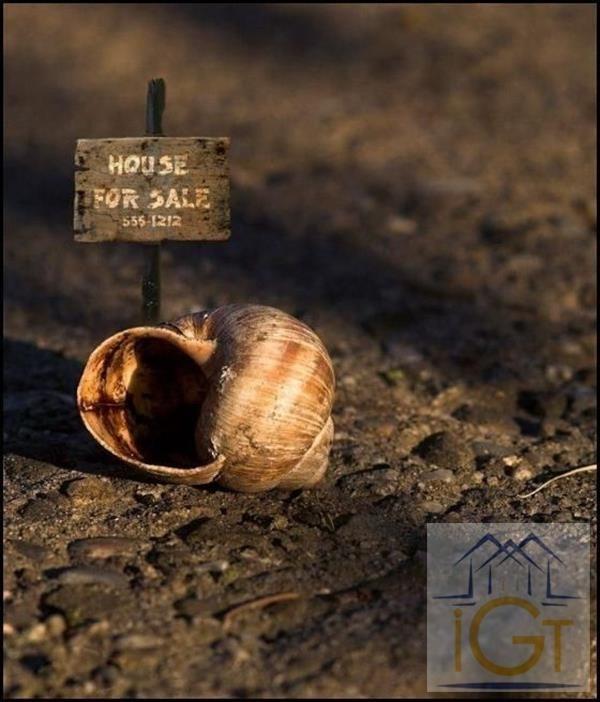 Sale house / villa La rochelle 55000€ - Picture 2