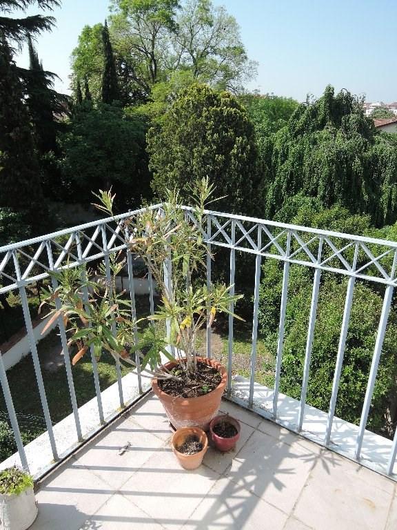 Toulouse Jardins des plantes