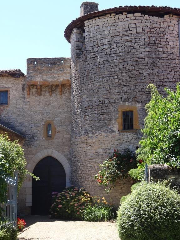 Vente de prestige château Morance 2496000€ - Photo 2