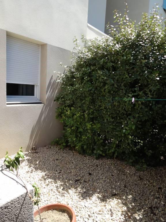 Alquiler  apartamento Morieres-les-avignon 628€ CC - Fotografía 3
