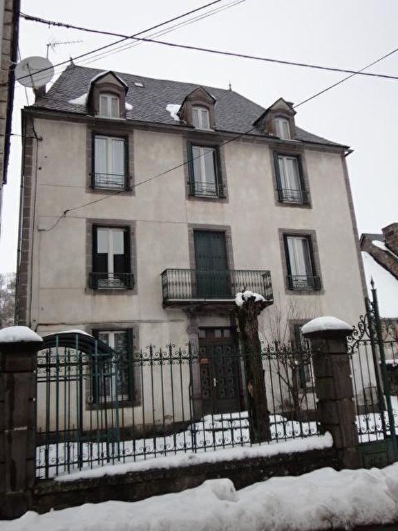 Vente maison / villa Besse 69700€ - Photo 1
