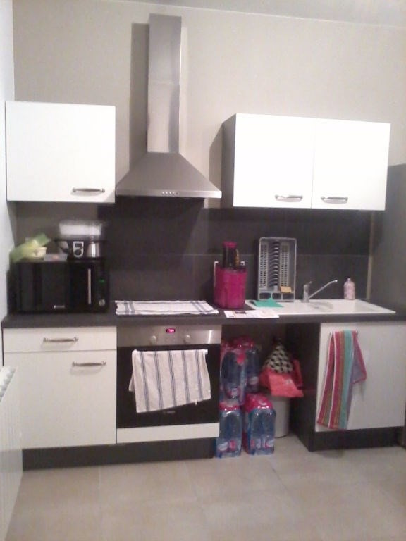 Rental apartment Bourgoin jallieu 450€cc - Picture 1