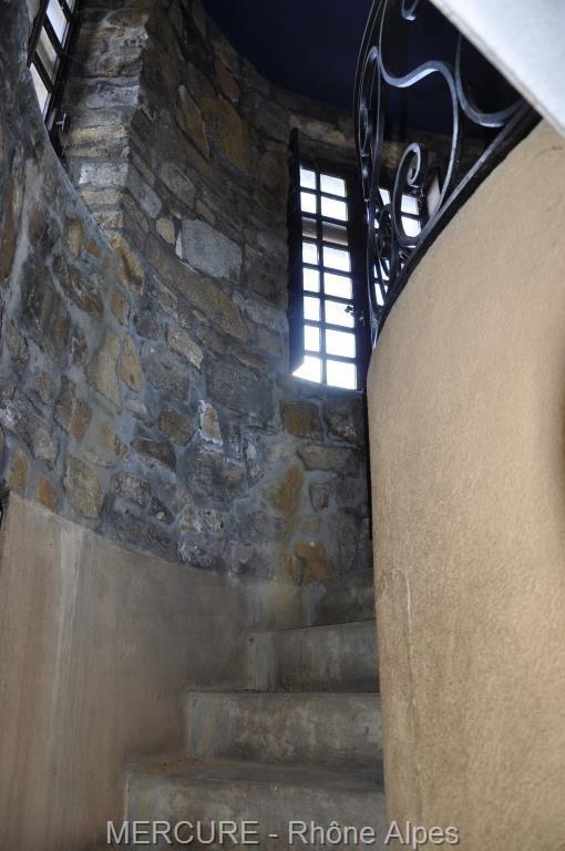 Vente de prestige château Trevoux 2550000€ - Photo 9