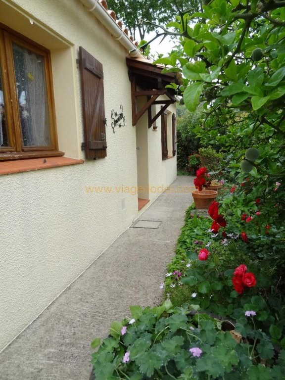 Life annuity house / villa Boutenac 40400€ - Picture 10