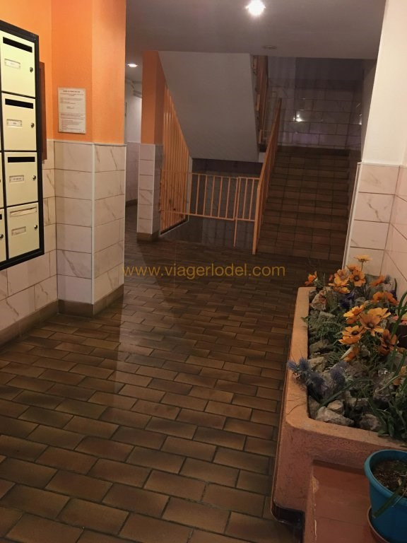 Life annuity apartment Toulon 32 500€ - Picture 4