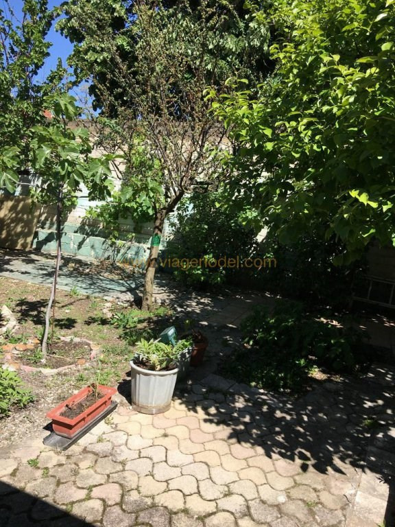 Life annuity house / villa Les angles 70 000€ - Picture 2