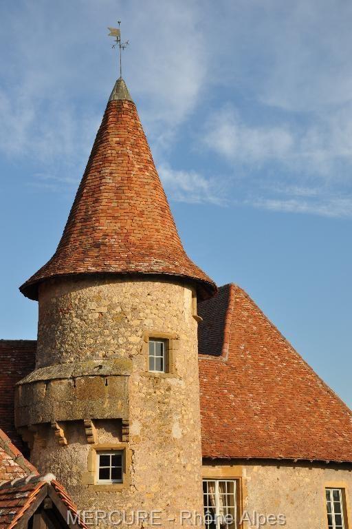 Vente de prestige château Pouilly sous charlieu 850000€ - Photo 11