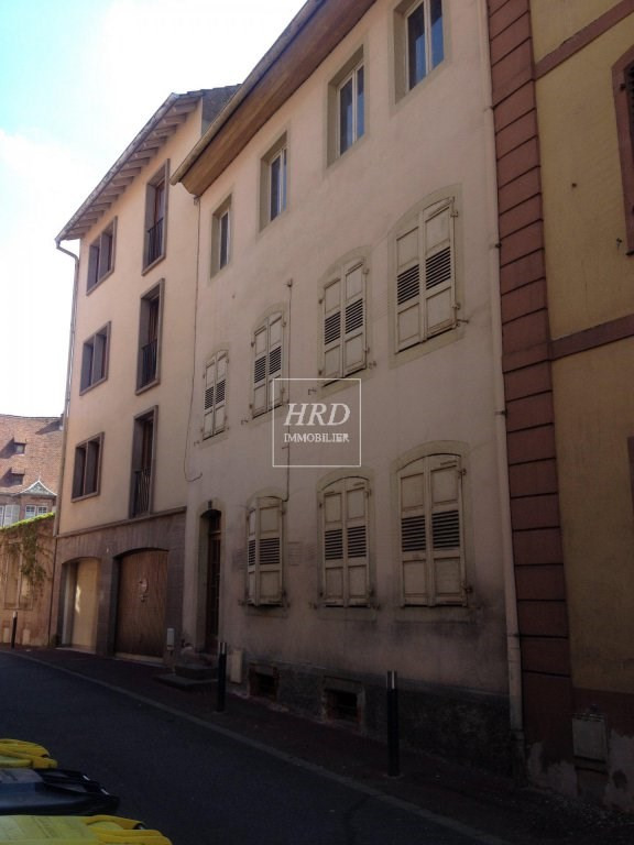 Vente immeuble Saverne 88 000€ - Photo 1