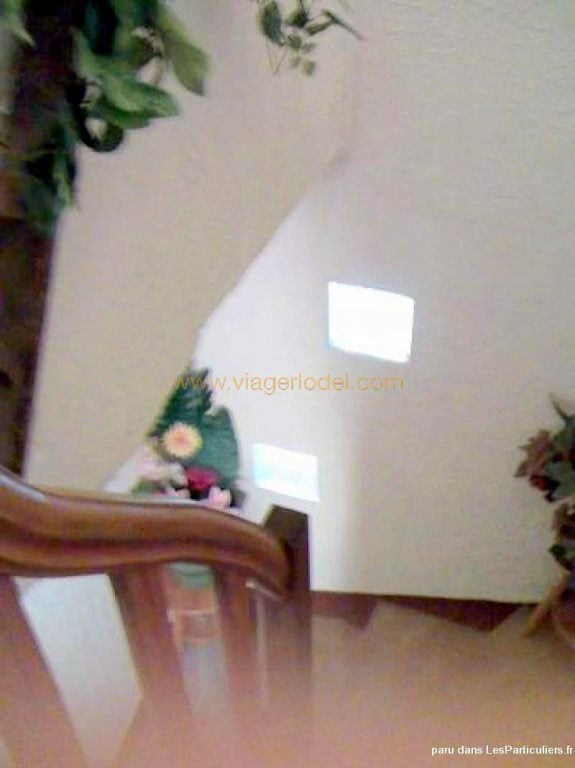 Vendita nell' vitalizio di vita casa Villefranche-de-rouergue 25000€ - Fotografia 4