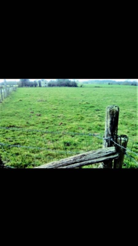 Vente terrain Flavignac 23000€ - Photo 2