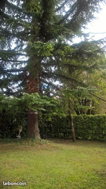 Vente maison / villa Grenoble 358000€ - Photo 3