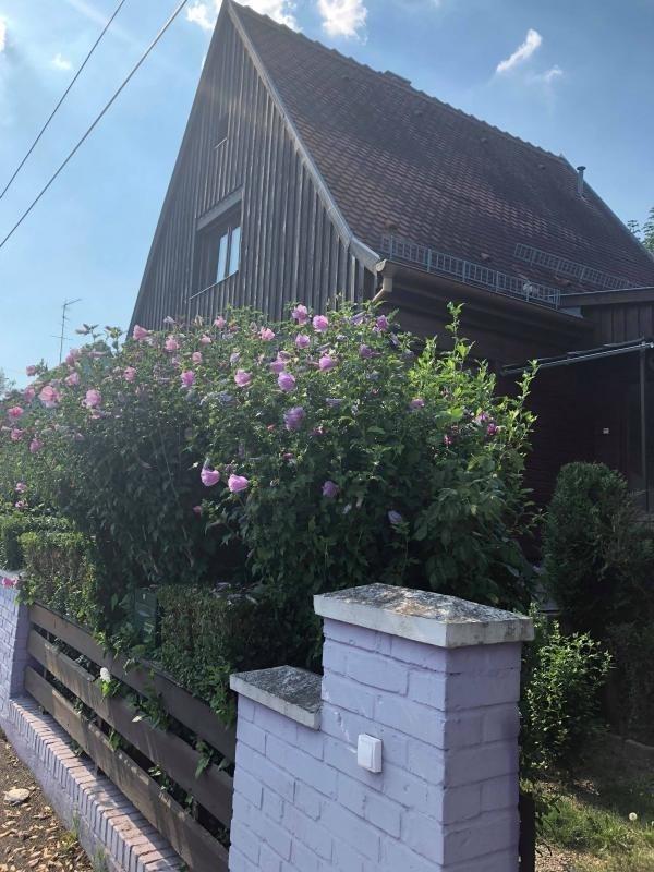 Location maison / villa Strasbourg 1320€ CC - Photo 1