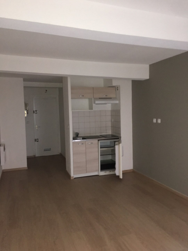 Location appartement Toulouse 450€ CC - Photo 1