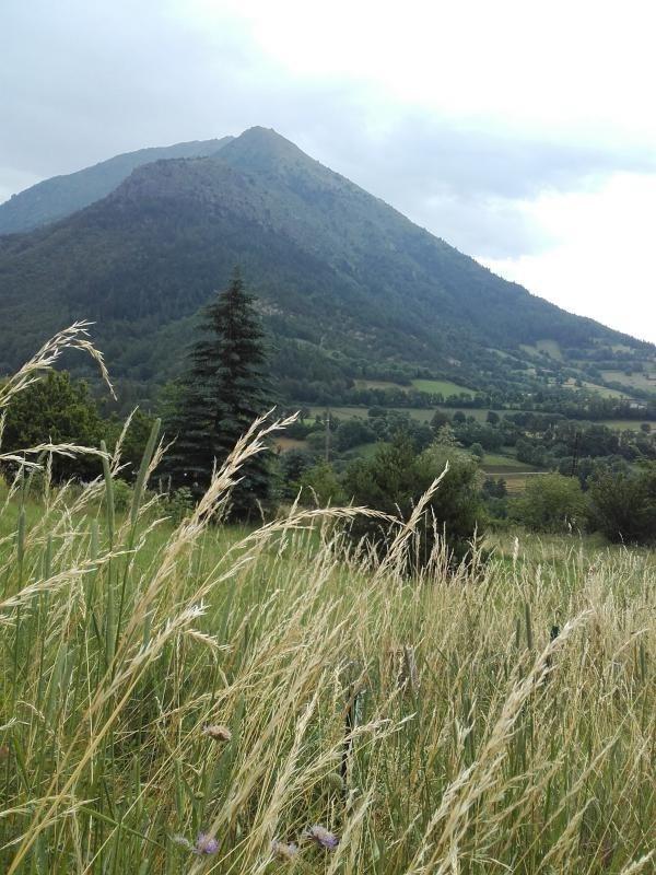 Vente terrain La motte en champsaur 69500€ - Photo 3
