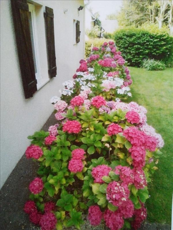 Venta  casa Honfleur 253500€ - Fotografía 2