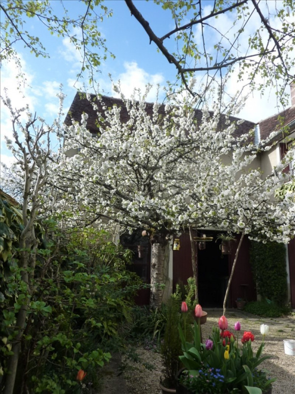 Vente maison / villa Secteur villeneuve / yonne 83000€ - Photo 6
