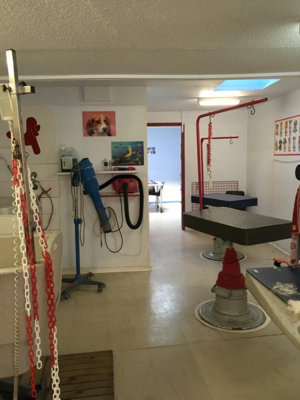 Vente maison / villa Colmar 222000€ - Photo 3