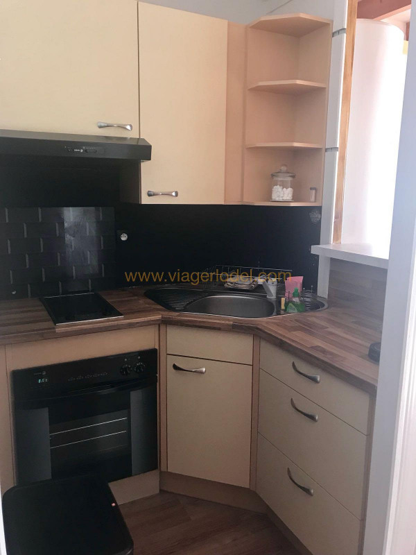 Viager appartement Guillaumes 55000€ - Photo 6