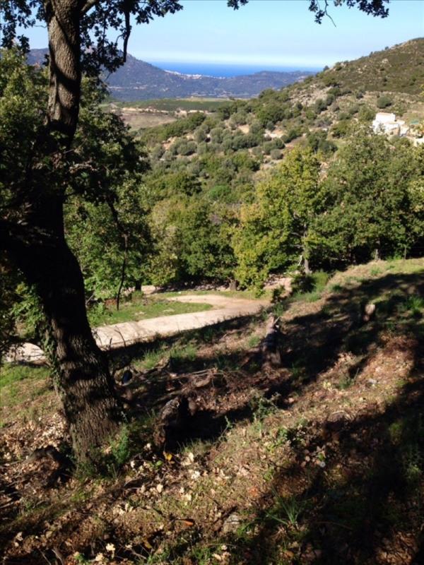Vente terrain Nessa 75000€ - Photo 5