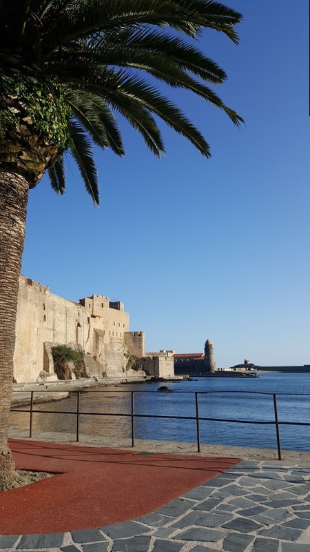 Location vacances appartement Collioure 332€ - Photo 9