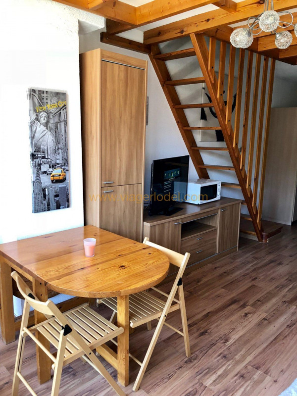 Viager appartement Guillaumes 53 000€ - Photo 6