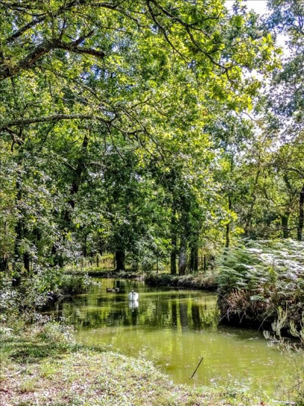 Sale house / villa Gaillan en medoc 540000€ - Picture 3