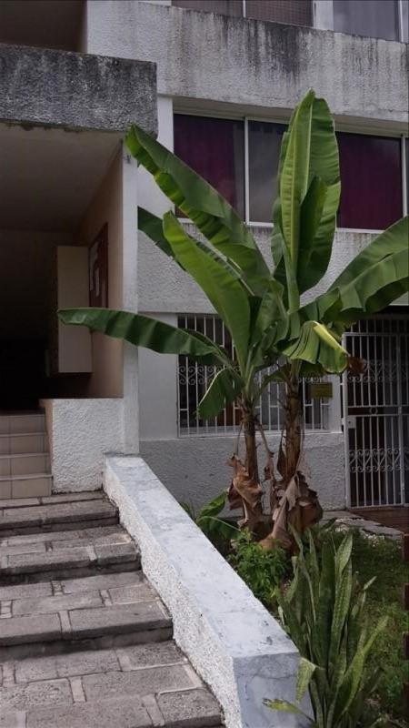 Rental apartment Le gosier 500€ CC - Picture 5