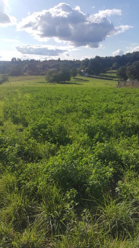 Vente terrain Nexon 19000€ - Photo 1