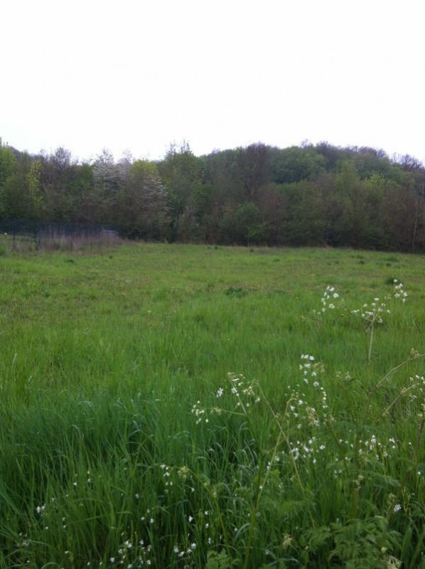 Verkoop  stukken grond Nogent le roi 79000€ - Foto 1