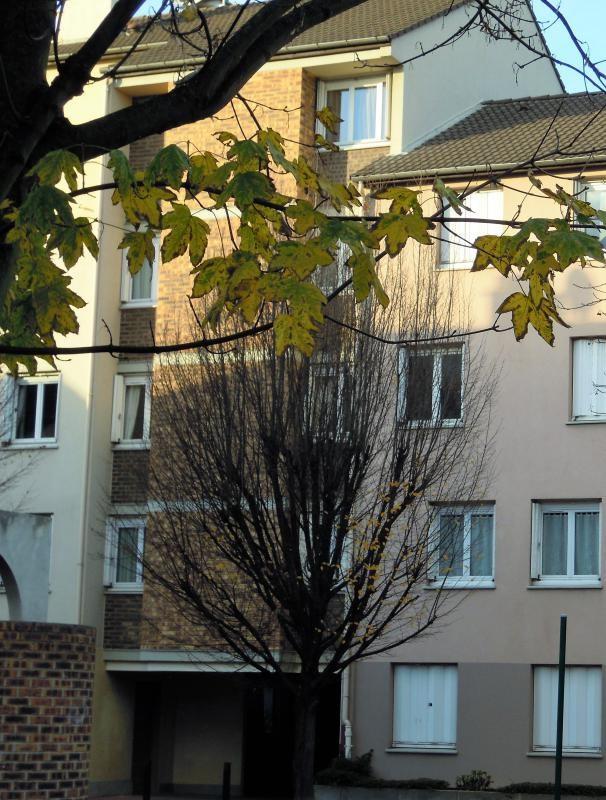 Vente appartement Gennevilliers 300000€ - Photo 1