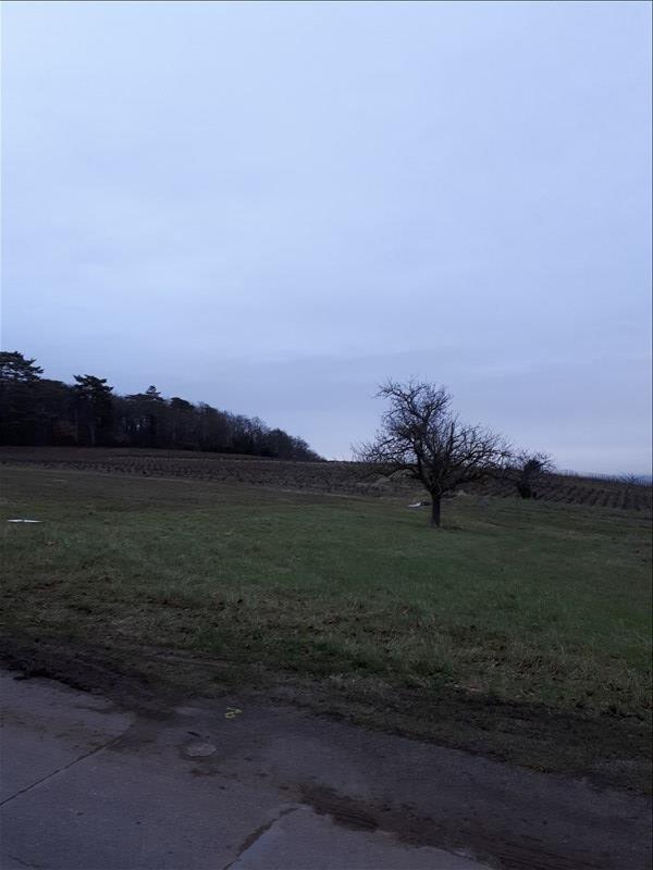 Vente terrain Montmelas st sorlin 145000€ - Photo 1