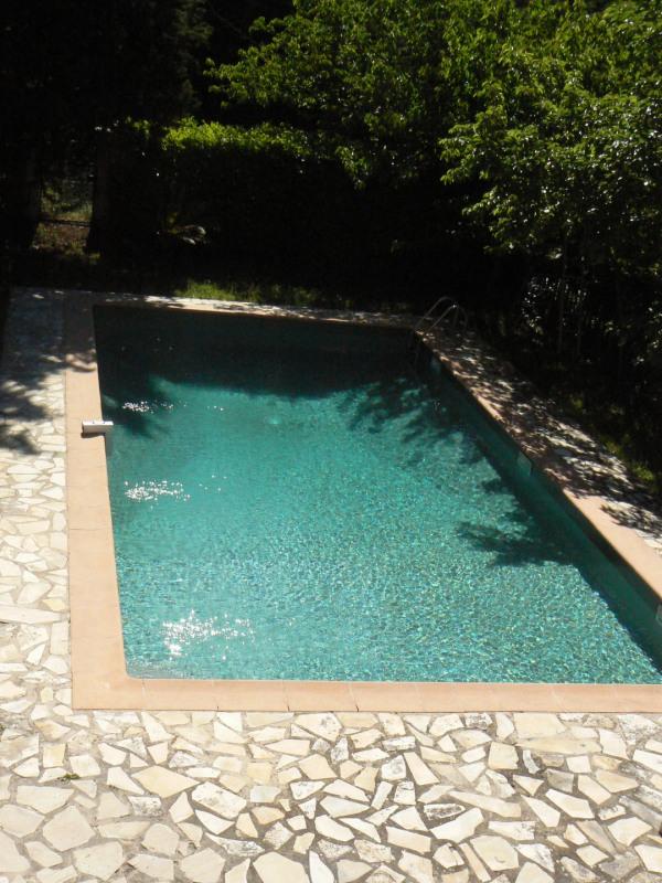 Deluxe sale house / villa Tourrettes 695000€ - Picture 7