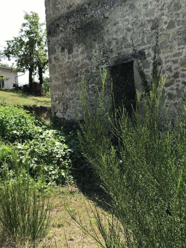 Vente maison / villa Couzeix 69 000€ - Photo 9