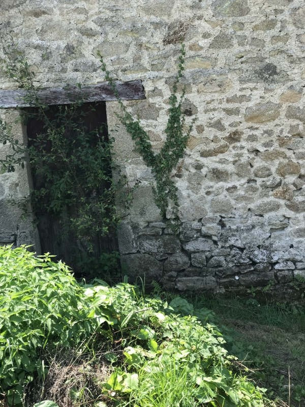 Vente maison / villa Couzeix 69 000€ - Photo 8
