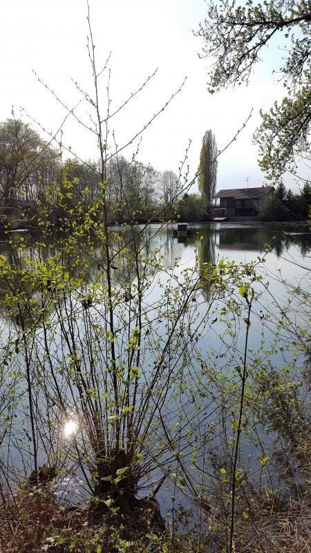 Vente maison / villa Colmar 495000€ - Photo 6