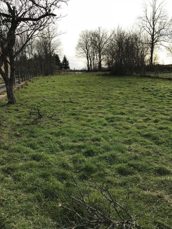 Vente terrain St pal de mons 49000€ - Photo 3
