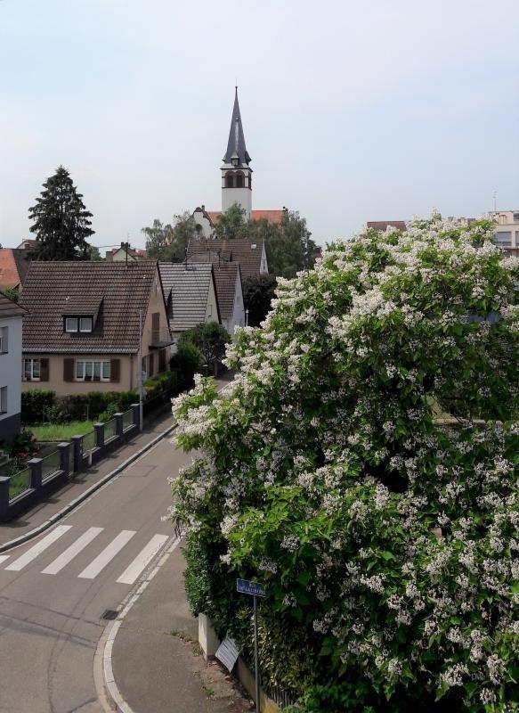 Alquiler  apartamento Lingolsheim 795€ CC - Fotografía 8